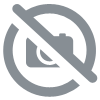 THERMOSTAT ELECTROMECANIQUE AVEC BULBE